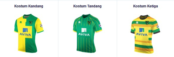 Norwich City kostum